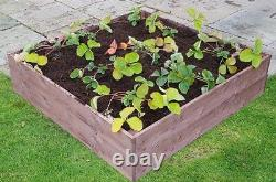 4ft x 8ft x 12 High Raised Bed FSC Timber with FREE Irrigation System Kit Grow