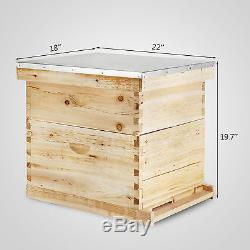 Essentials Complete 20 Frame Double Level Bee Hive Starter Kit Start Beekeeping
